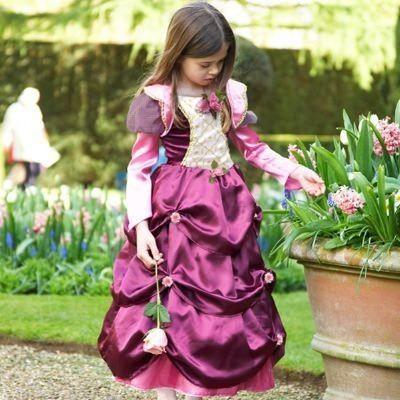 Verkleidung - Prinzesskleid mit Rosen - 6-8 Jahre